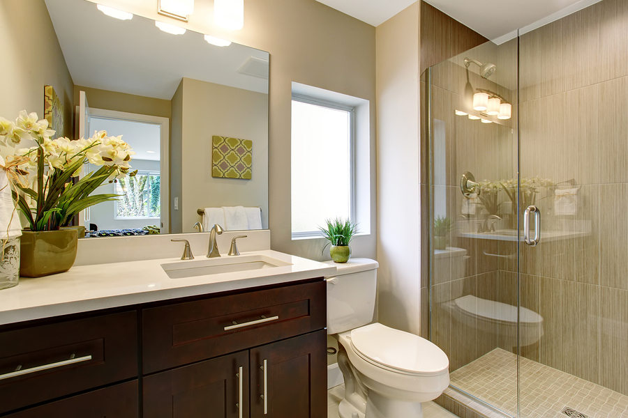 Nice Bathroom With Glass Shower And Small Plants As Decor. Remodeling ...